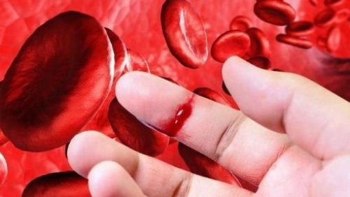 Está parado há mais de um ano o concurso para compra centralizada de fármacos para hemofilia