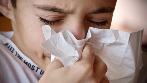 Concentrações de pólenes muito elevadas em Portugal continental