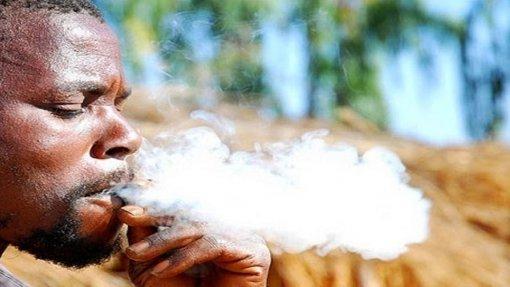 Cabo Verde perde 14,5 ME/ano devido a doenças relacionadas com tabaco, segundo um estudo