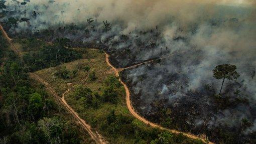 Brasil aberto a receber apoio internacional para Amazónia, mas impõe condições