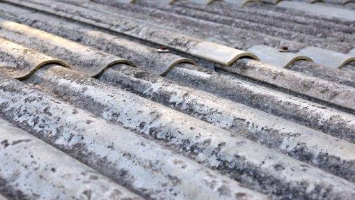 Cordão humano em escola de Queluz para exigir retirada de amianto