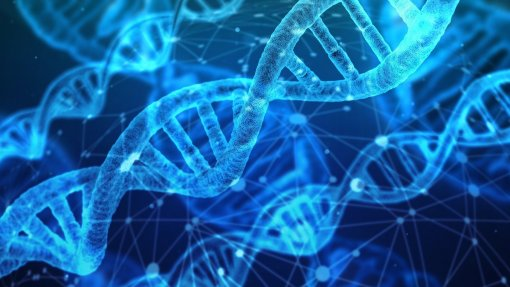 Deco alerta para riscos de comprar testes genéticos pela internet