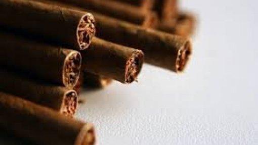 Imagens choque devem estender-se aos maços de cigarrilhas