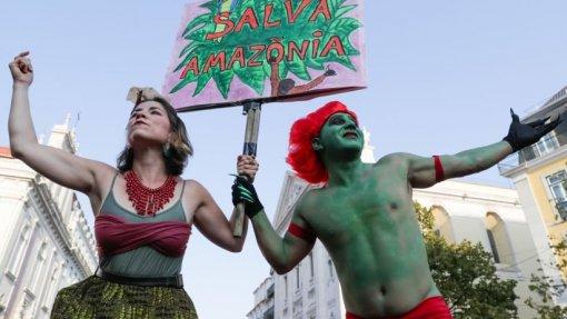 COP25: Ambientalistas defendem que proteção da Amazónia é crucial para a economia