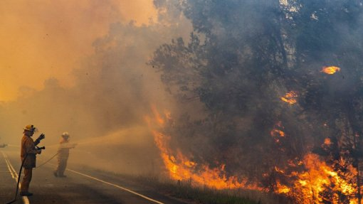 Cientistas adaptam investigação aos novos riscos dos incêndios