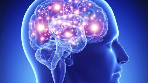 Covid-19: Cientistas lançam medidas de segurança para a investigação na área da neurociência