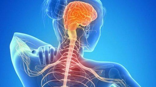 Covid-19: Doentes com esclerose múltipla sofreram impacto e em quase 20% doença progrediu