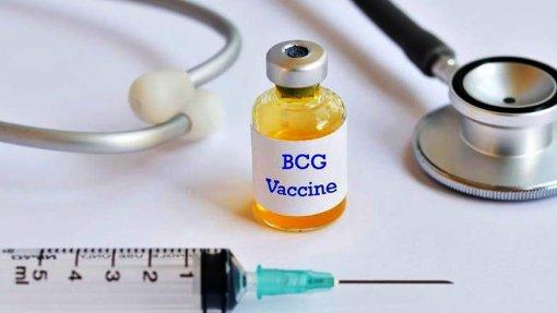 Covid-19: Investigação vai estudar efeitos da BCG no absentismo dos profissionais de saúde nos PALOP