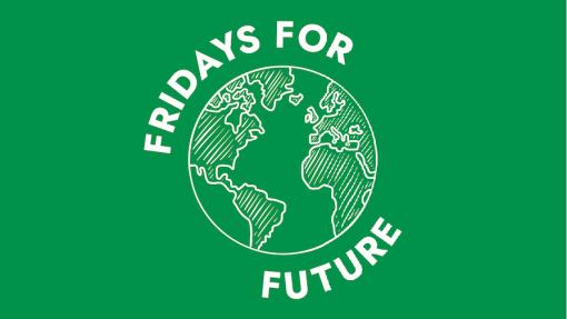 Covid-19: Fridays for Future lança recolha de fundos para comunidades indígenas na Amazónia