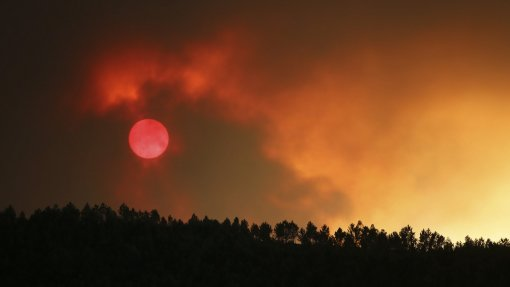 Incêndios: Risco máximo em cerca de 50 concelhos do interior Norte, Centro e Algarve