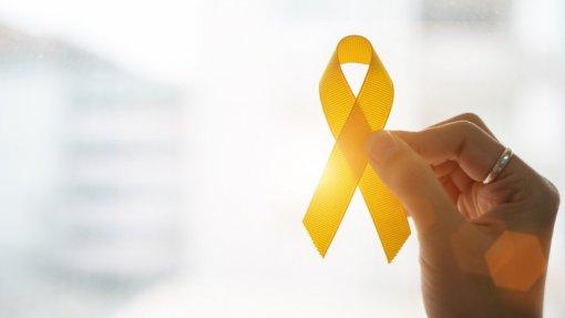 """Covid-19: Pandemia teve """"claro impacto"""" na área das hepatites virais - Isabel Aldir"""