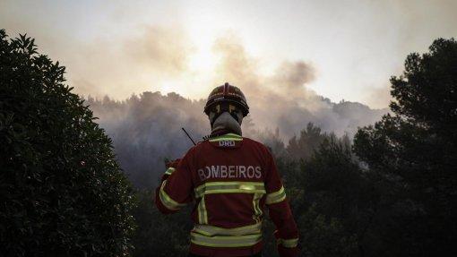 """Incêndios: Fogo de Oleiros dado como """"em conclusão"""" às 08:52"""
