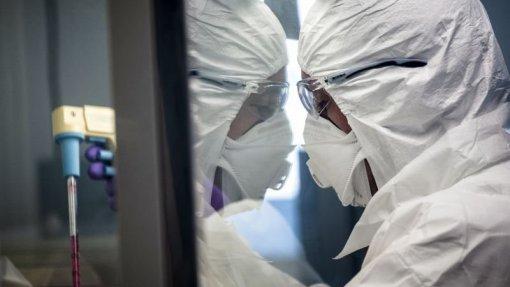 """Covid-19: Universidade de Macau lidera desenvolvimento de vacina com """"potente resposta"""" em animais"""