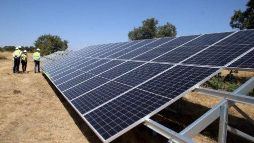 Central fotovoltaica em Mogadouro estimula emprego em tempos de crise pandémica