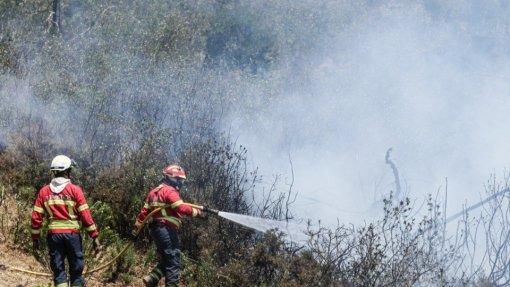 Incêndios: Fogo da Covilhã tem uma frente ativa e não há povoações em perigo