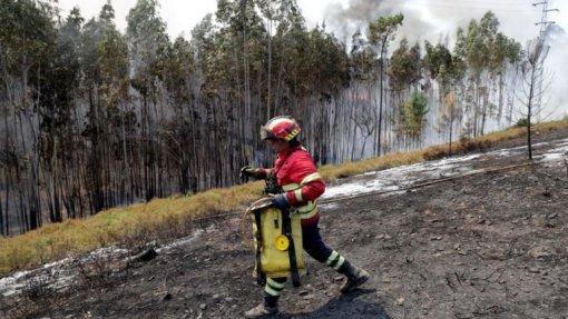 Incêndios: Dominado fogo na Covilhã