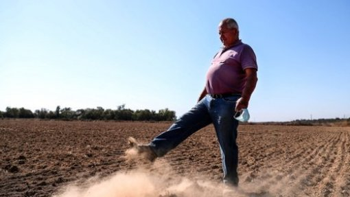"Seca: Sem rega a partir de barragem no Alentejo, agricultores olham para ""terra descascada"""