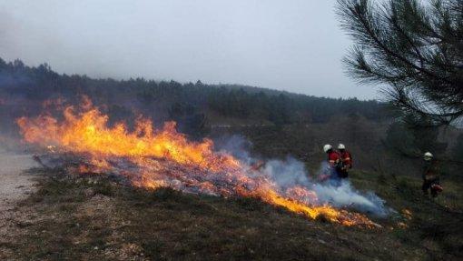 Mais de meia centena de concelhos de nove distritos em risco máximo de incêndio