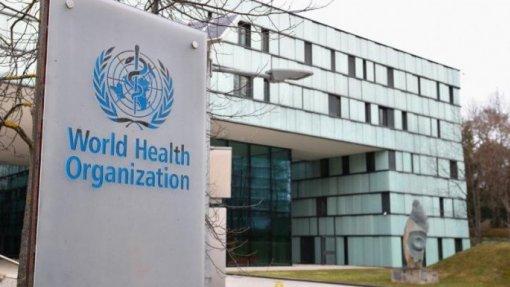 Covid-19: Relatório sobre a origem do vírus divulgado na semana de 15 de março - OMS