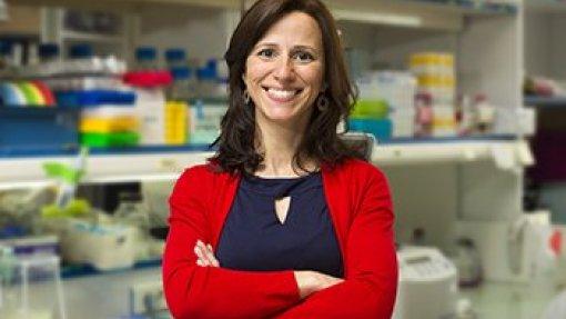 Estudo deteta células que causam leucemia antes de a doença se manifestar