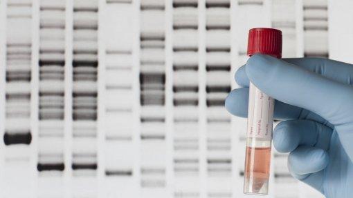 Estudo conclui que gene da juventude tem impacto na regeneração do tecido muscular