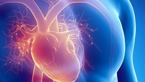Sociedade Portuguesa de Aterosclerose faz campanha 'online' sobre doenças cardiovasculares