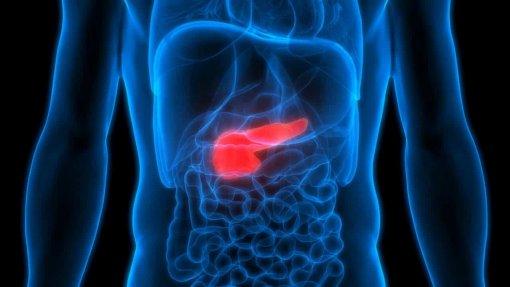 Centro de Cancro do Pâncreas Botton-Champalimaud pode operar 10 doentes/dia